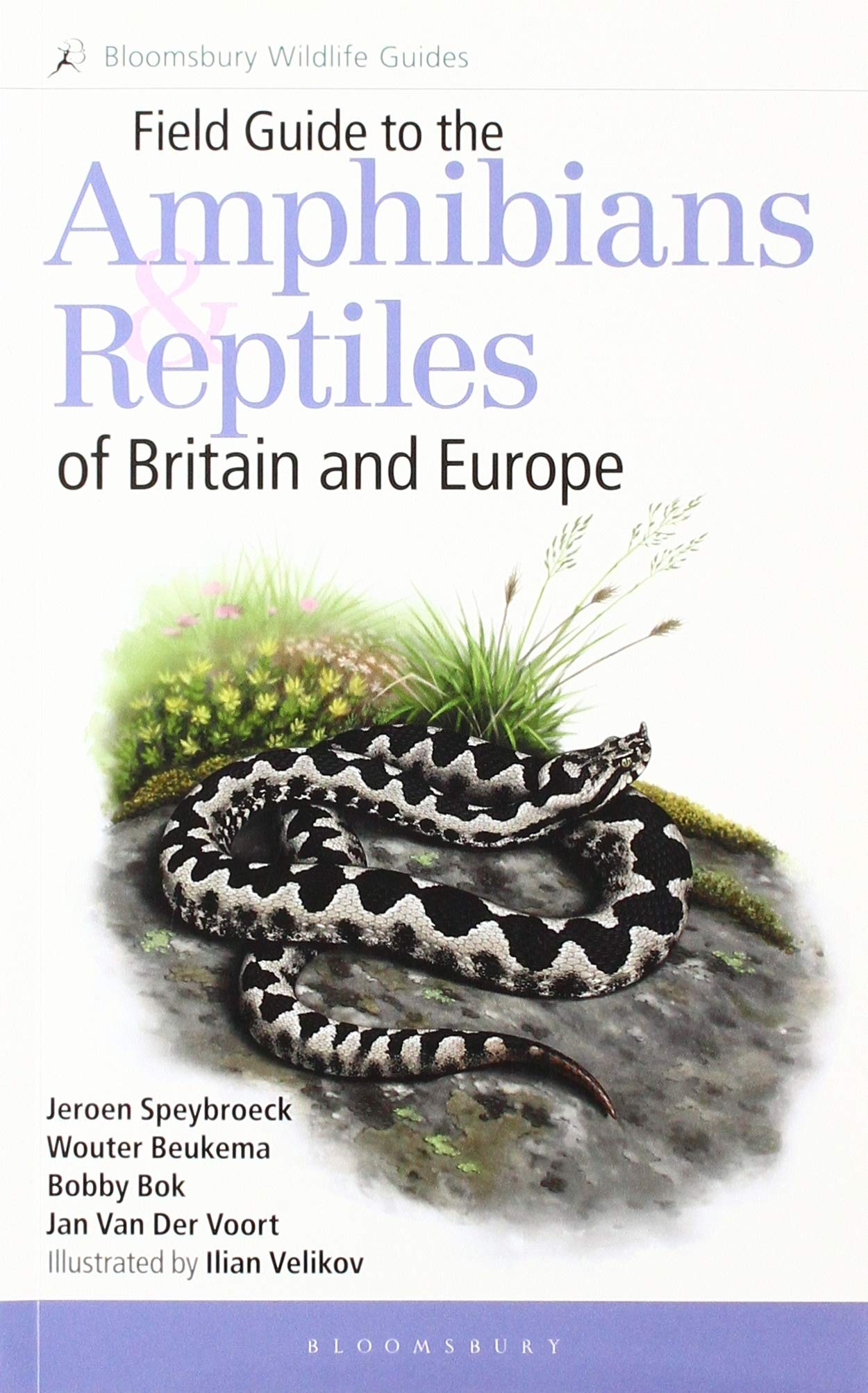Image OfField Guide To The Amphibians And Reptiles Of Britain And Europe