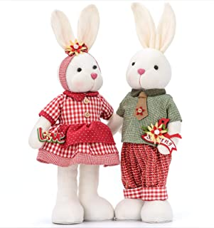 Eeast Bunny Decorations for Home