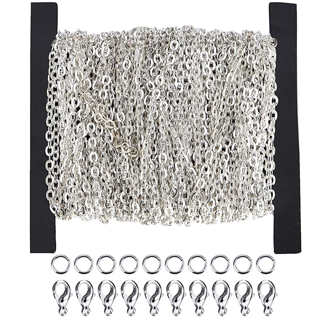 WUBOECE Dcatcher 39 Feet Curb Chain Necklace Bulk Cable 2mm Width with 30 Lobster Clasps and 100 Open Jump Rings for Jewelry Making, Silver