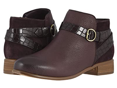 SoftWalk Raveena (Dark Brown) Women