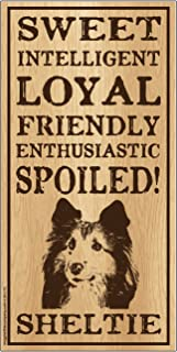 "Imagine This Sheltie""Spoiled!"" Wood Sign"