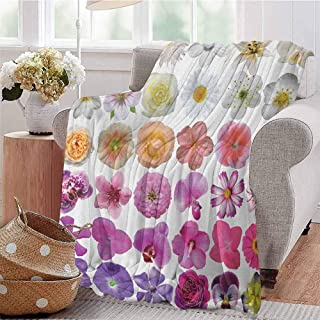 Luoiaax Flower Commercial Grade Printed Blanket Pattern of Various Vase Flowers Petunia Botanic Wild Orchid Floral Nature Art Queen King W80 x L60 Inch White Lilac Pink