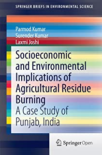 Socioeconomic and Environmental Implications of Agricultural Residue Burning: A Case Study of Punjab, India (SpringerBriefs in Environmental Science)