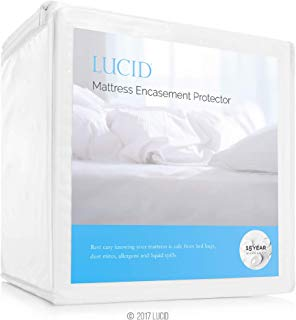 LUCID Encasement Mattress Protector - Completely Surrounds Mattress for Waterproof, Allergen Proof, Bed Bug Proof Protection -15 Year Warranty - Queen size