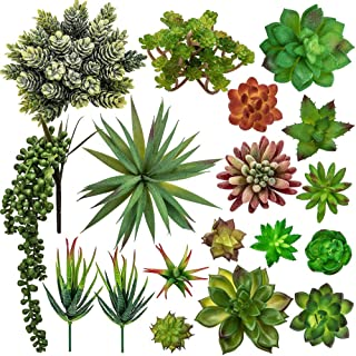 Chasehill Mini Artificial Succulent Plants Unpotted, 18 Assorted Fake Plants Textured Aloe Faux Succulent Pick Wall Succulent Decor for Home Decoration