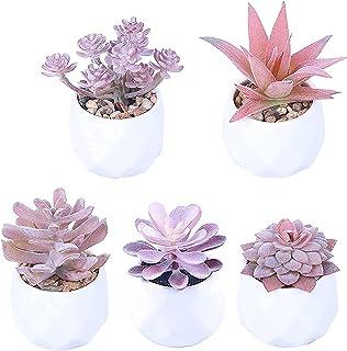 PAKUES-QO Plantes artificielles en pot d'intérieur, petites plantes artificielles en pot Série en pot (5 pièces) Capacité ...