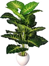 BK Mart Big Areca Palm Money Plant Tree with 18 Long Leaves Bonsai Artificial Plant with Pot (70 cm, Green, Yellow)