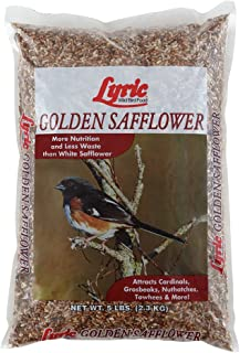 Lyric 2647444 Golden Safflower Seed - 5 lb.
