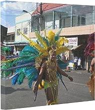 trinidad carnival 2010