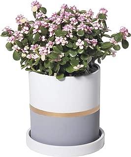 Best 15 flower pots Reviews
