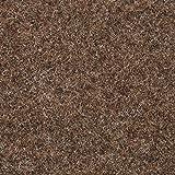BODENMEISTER BM73501 Teppichboden Nadelfilz Nadelvlies Meterware Objekt braun beige 200 cm und 400 cm breit, verschiedene Längen, Variante: 6 x 2 m