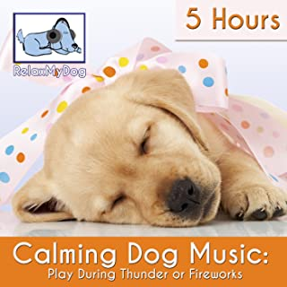 Calming Dog Music: Play During Thunder or Fireworks - 5 Hours