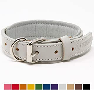 Best white leather dog collar and lead Reviews
