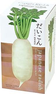 聖新陶芸 おうちで根菜栽培セット だいこん サイズ:約W10.3 D10.3 H18.8 GD-89101