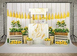 Kate Lemon Shop Hintergrund Fotografie 2,1 x 1,5 m Kindergeburtstag Party Dekoration Fotohintergründe Weiß Holz Wand Nahtlos Weicher Stoff Hintergrund Schießen