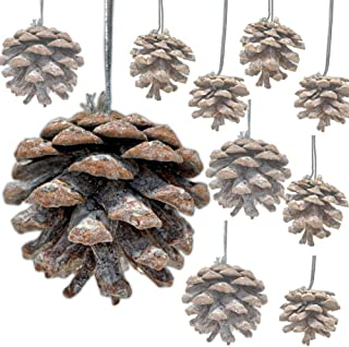 BANBERRY DESIGNS Pinecone Ornaments - Approx. 60 (2 Bags) Real Pinecones Assorted Sizes - Natural Brown White Washed Cones Strings - Rustic Small Pinecones Bulk - Fall Christmas 1.5 Inch to 2.5 Inch