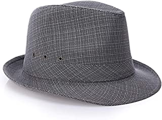 ZiWen Lu Hat Men's Middle-Aged Spring and Summer England, Hong Kong and Macao Sunshade Outdoor Sun Hat (Color : Grey, Size : 59cm)