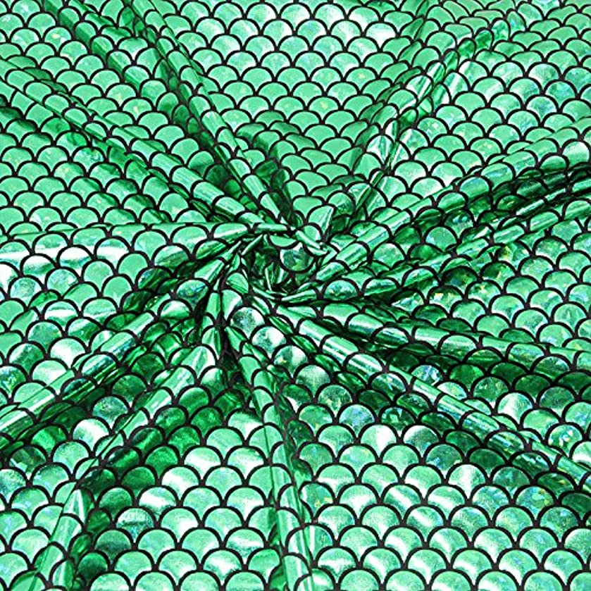Mermaid Hologram Spandex Fabric Fish Scale 4 Way Stretch Laser Knit Cloth 58