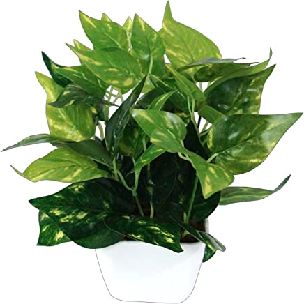 Pindia Plastic Miniature Money Plant Leaf Artificial Indoor/Outdoor Plant Decorative Plant with Pot (18 cm x 10 cm x 23 cm, Green)