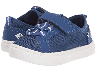 Sperry Kids Abyss A/C Washable (Toddler/Little Kid) (Blue) Boy