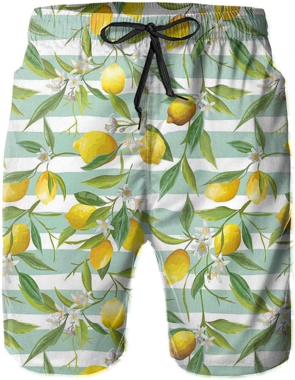 Blooming Lemon Tree On Striped Paintbrush Background Evergreen Art Mens Swim Shorts Casual Workout Short Pants Drawstring Beach Shorts,XXL