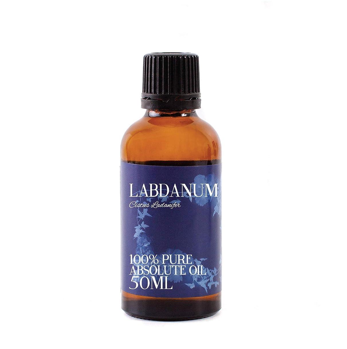 自己尊重リム進行中Labdanum Absolute 50ml - 100% Pure
