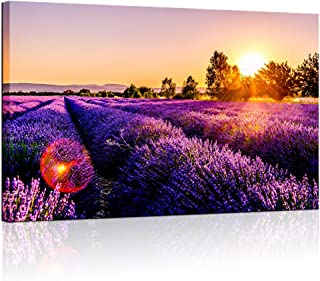 Biuteawal - Modern Painting Wall Art Purple Lavender Field at Sunset Landscape Canvas Print Nature Flower Picture for Home Wall Decor