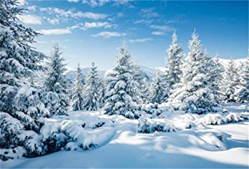 Amazon Com Aofoto 10x7ft Snowy Scenery Backdrop Forest Snow Tree Photography Background Winter Snowfield Landscape Snow Covered Fir Pine Tree Outdoor Sky Christmas New Year Photo Studio Props Vinyl Wallpaper Electronics