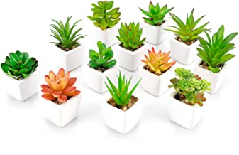 WOODWORD Fake Succulent Plants in Pot Mini Artificial Plants Potted Faux Succulents for Home Office Cactus Decor, Set of 12