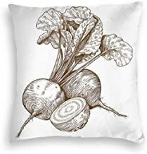 GULTMEE Velvet Soft Decorative Square Accent Throw Pillow Covers Cushion Case,Beet Roots Gardening Farm Agriculture Cookbook Recipe Vegetarian Pattern,for Sofa Bedroom Car 16IN