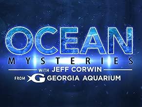Ocean Mysteries - Season 4
