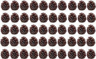 Toyvian 50ピース6-8センチクリスマスナチュラルパインコーン松ぼっくりの装飾クリスマスツリー装飾工芸家の家キッチンテーブルショーケース装飾品