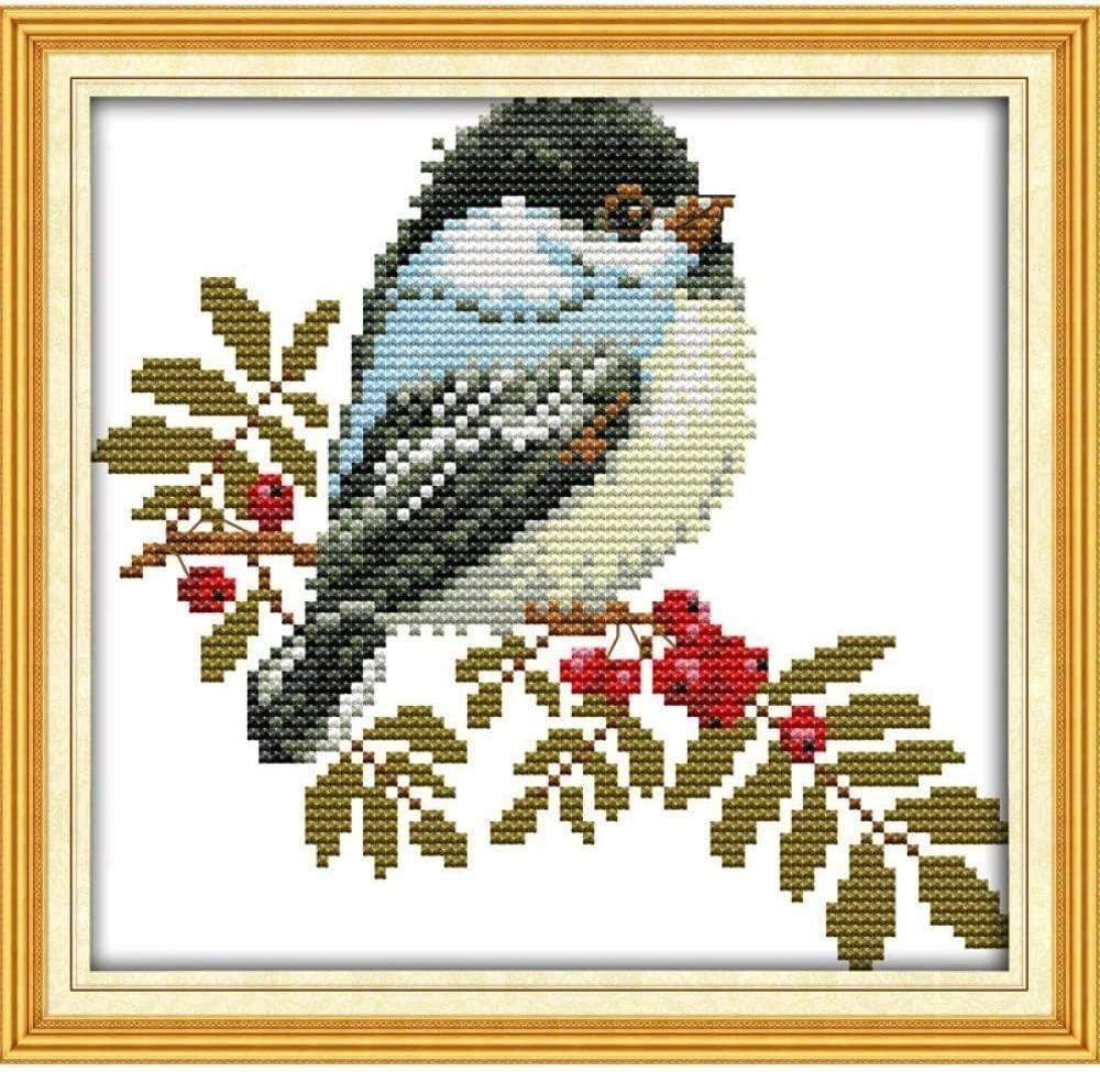 Cross Stitch Kits Cute Bird 40X50cm Max 68% OFF stitc- for Milwaukee Mall Adults DIY