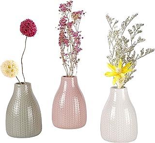 EMMA's Small Vase Set,Ceramic Flower Vases Set of 3,Decorative Modern Floral Vase for Home Decor Living Room Centerpieces ...