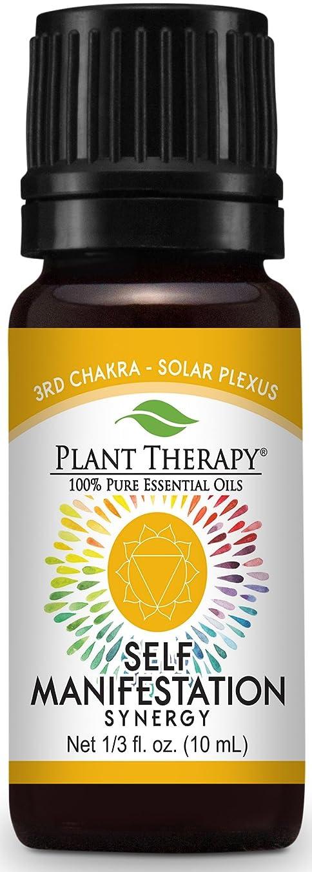 ワードローブお勧め植物セラピー7チャクラエッセンシャルオイルブレンド。人間の体内で精神的な力のセンター。 (太陽神経叢を10ml(1/3オンス))