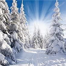 Best winter snow backdrop Reviews
