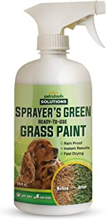 PetraTools Green Grass Paint for Lawn, Ready-To-Use Green Grass Lawn Spray & Dog Spot Repair, Lawn Paint, Spray on Grass, ...