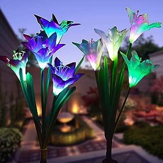 solar light in flower pot