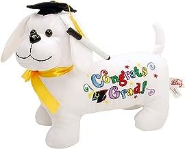 Plush Autograph Cross for Graduation Stuffed Autograph Plush Toys 1 Piece Fun Express Graduation