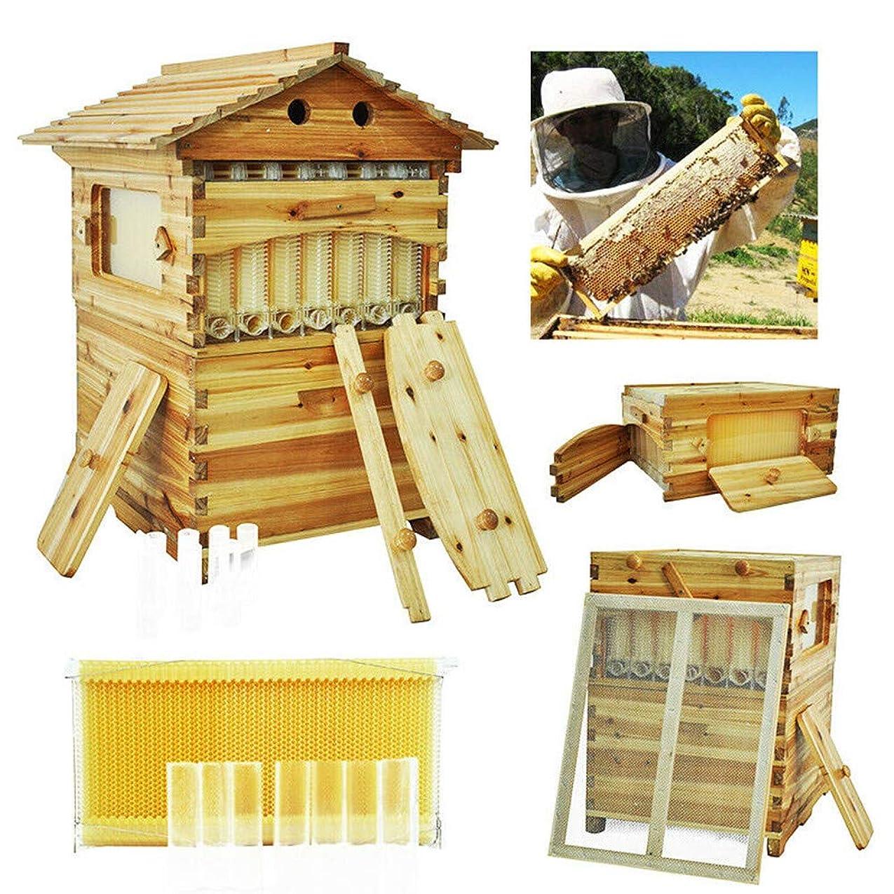 後者近傍ファンド巣箱 自動流れの蜜蜂 巣箱 ニホンミツバチ捕獲箱 ビーハイブ 養蜂用具 養蜂器具,オートフロー巣 箱フルセット (7PCS)