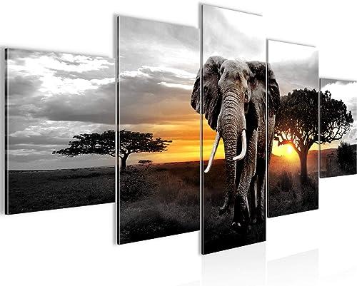 Runa Art - Tableau Afrique L'Éléphant 200 x 100 cm 5 Parties XXL Decoracion Murale Dessin Gris Orange 001251c