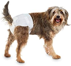 SO PHRESH Comfort Dry Disposable Dog Diapers