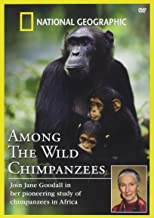 Among the Wild Chimpanzees, The