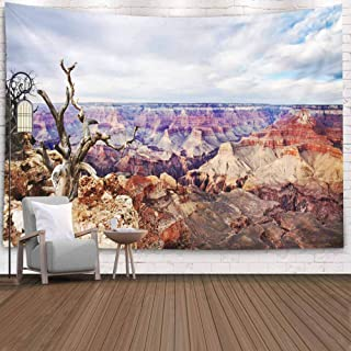 Awerknhu Home Decor for Men,Funny Tapestry Wall Hanging,Dorm Decor Dead Tree Edge Point South Rim View Grand Canyon National Park Wall Tapestry for Bedroom,Dormitory Tapestry Wall Hanging 80X60 Inch