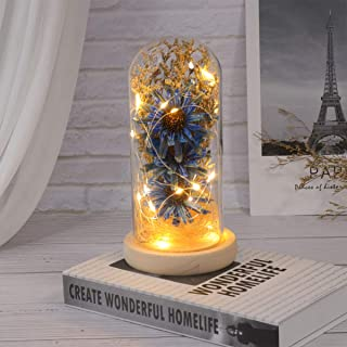 Mobestech Sunflower in a Glass Dome with LED Lights Decorative Table Lamp Preserved Flower Gifts for Her Mothers Day Valen...