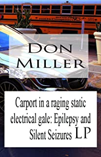 Carport in a Raging Static Electrical Gale: Epilepsy and Silent Seizures LP