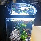 con interruptor luz sumergible europea L/ámpara de iluminaci/ón para acuario azul y blanco tubo Fish Tank Top-Sell 30cm LED impermeable IP68