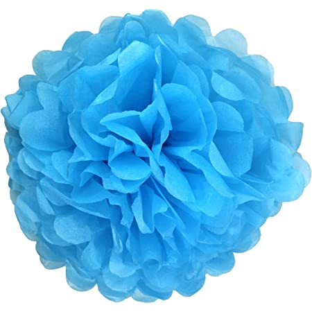 Orange 2, 10 inch Lightingsky 10pcs Tissue Paper Pom Poms DIY Decorative Flowers Ball Perfect for Party Wedding Home Outdoor Decoration