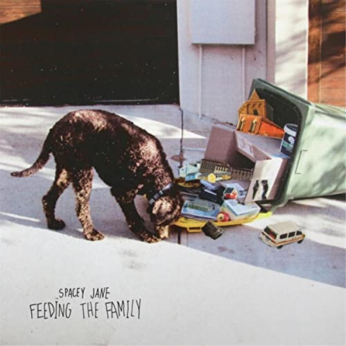Amazon.com: Feeding the Family [Explicit]: Spacey Jane: MP3 ...