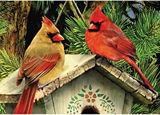 Paint by Numbers for Adults, DIY Painting Paint by Numbers Kits On Canvas,Merry Christmas Cardinal Bird,16X20Inch